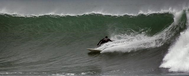 Ruggles surfing USA