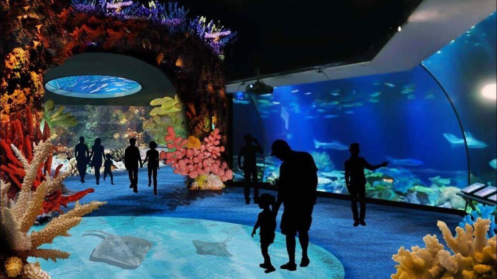 světoznámé chicagské akvárium Shedd