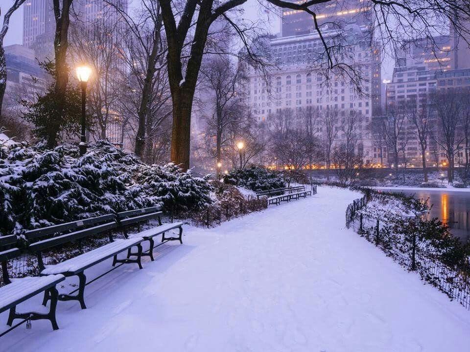 New York v zimě je kouzelný
