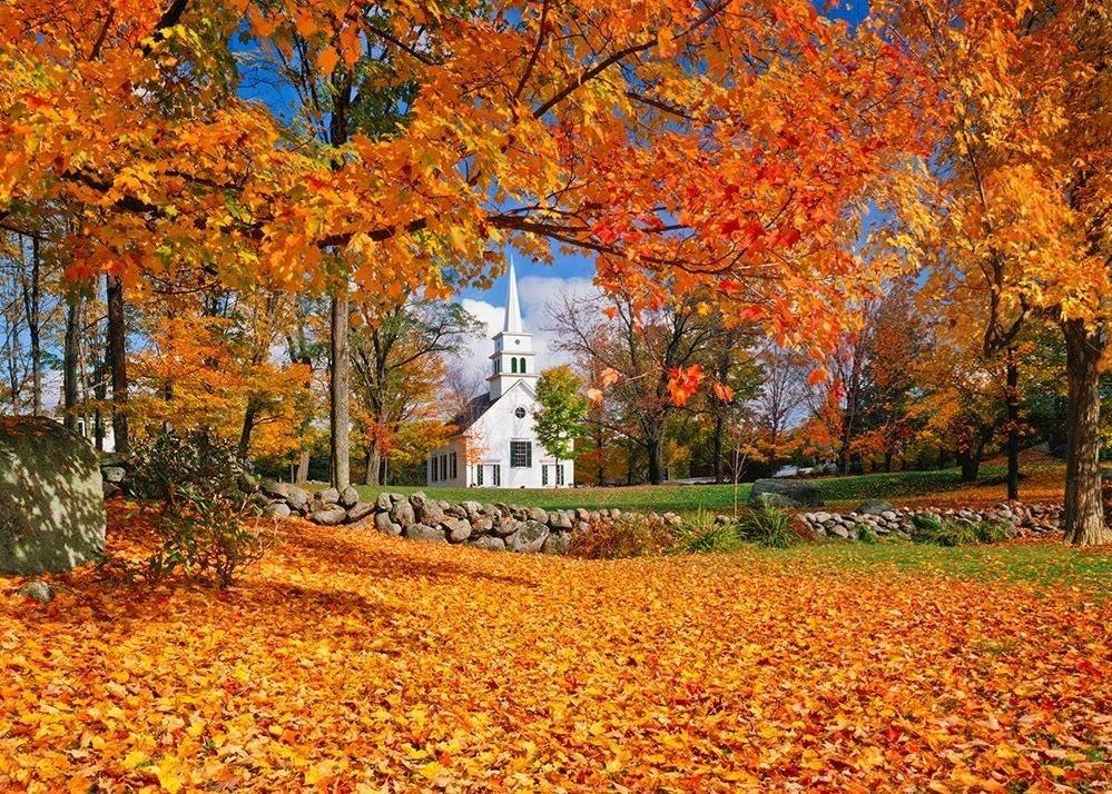 spadané listí a podzim na americkém venkově