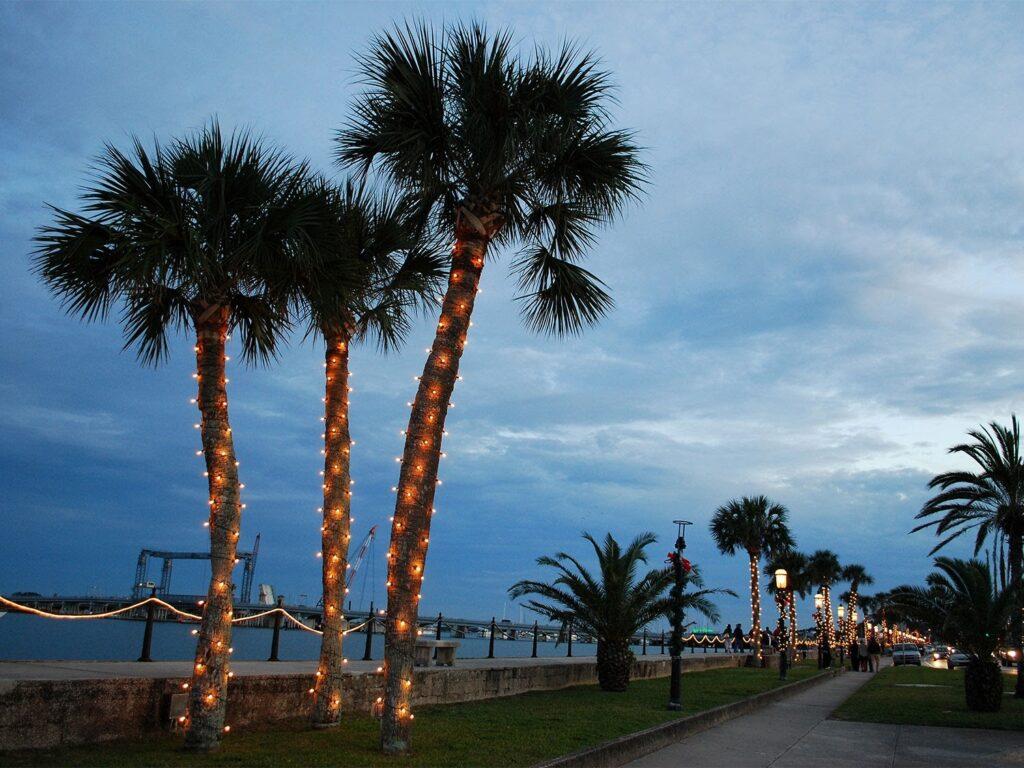 zatažená obloha a palmy na floridském pobřeží