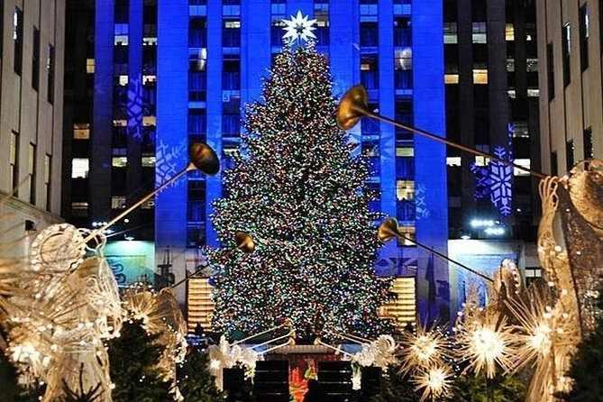 vánoční stromek v zimním New Yorku